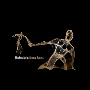 "Markus Mehr - ""Binary Rooms"""