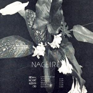 Nageire